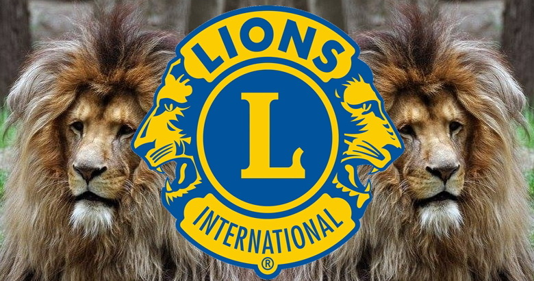Lions with logo